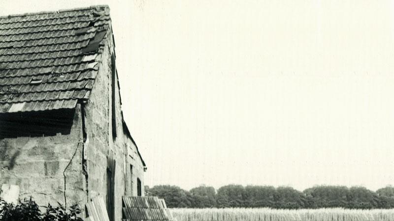 Naumann-Naturstein-1968-01.jpg